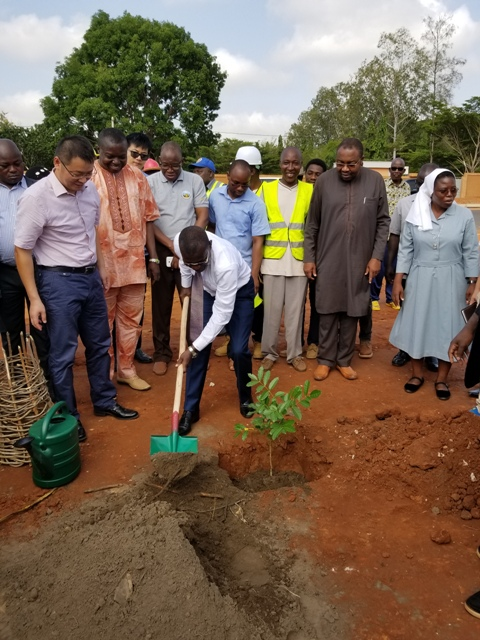 JOURNEE NATIONALE DE L'ARBRE AU TOGO : L'ASAIGE N'A PAS DEROGE A LA TRADITION